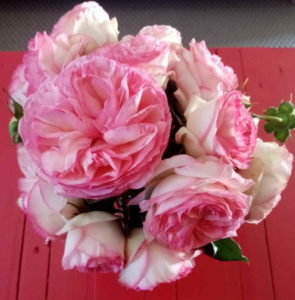 bouquet de roses Isabelle Seguin
